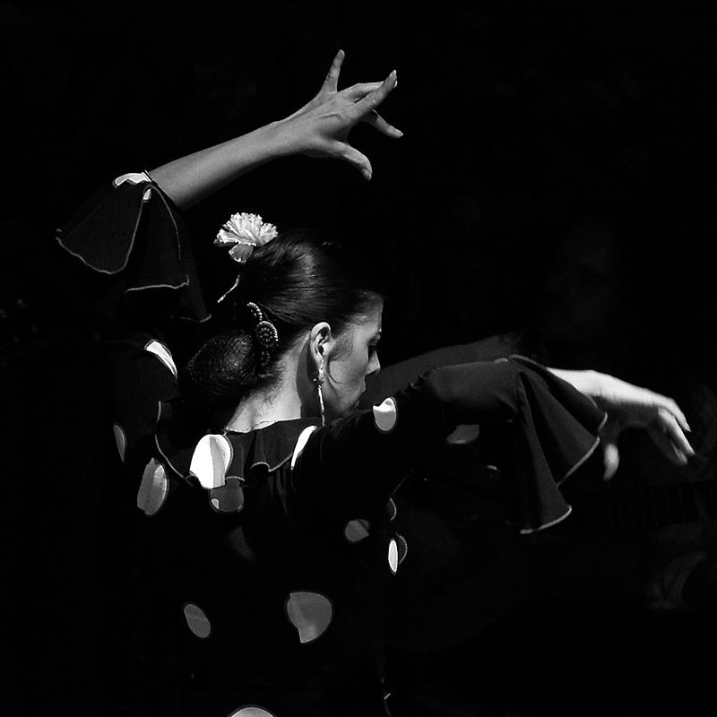 Ioannis-Stamou-artistas-28