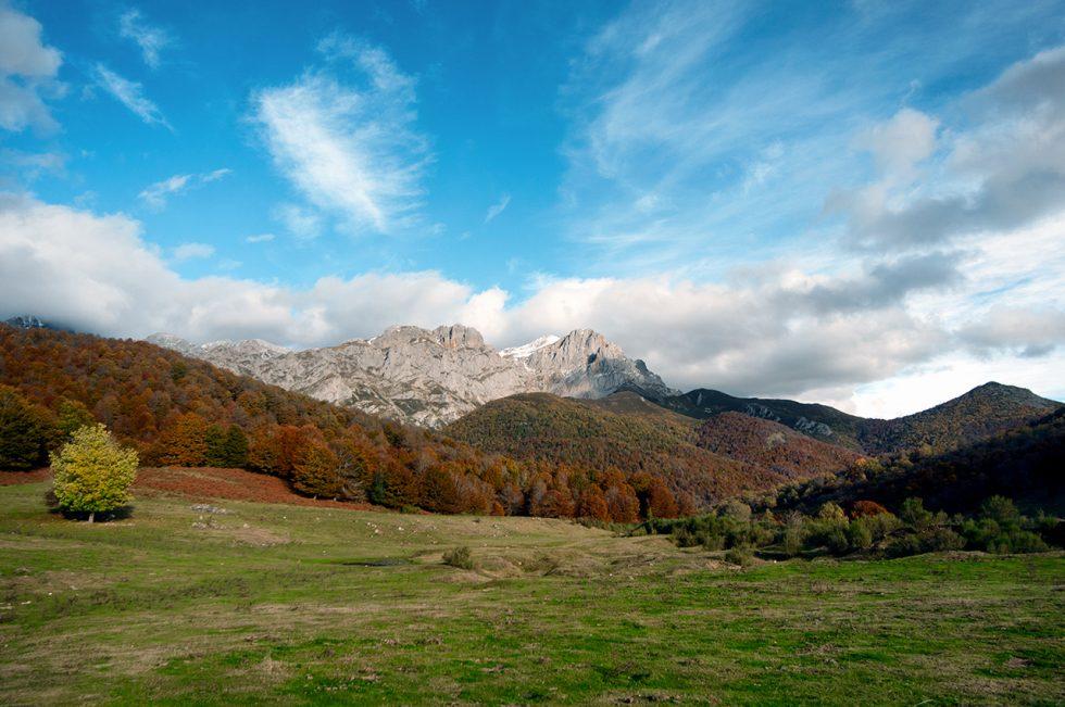 Ioannis-Stamou-Naturaleza-color-18