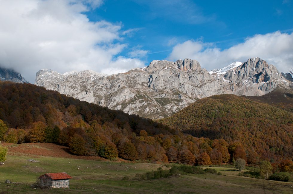 Ioannis-Stamou-Naturaleza-color-19