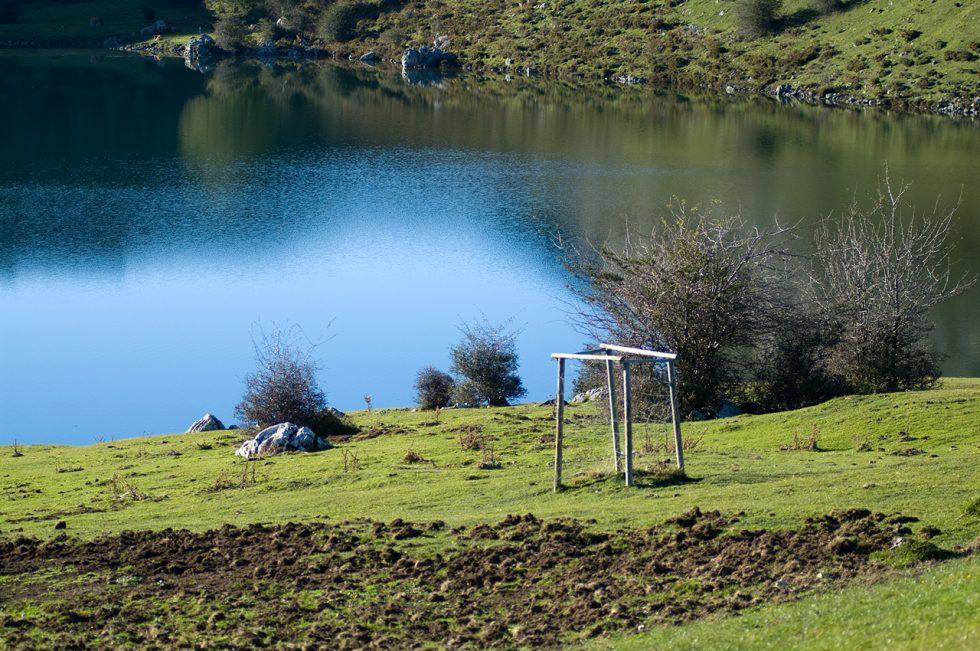 Ioannis-Stamou-Naturaleza-color-23