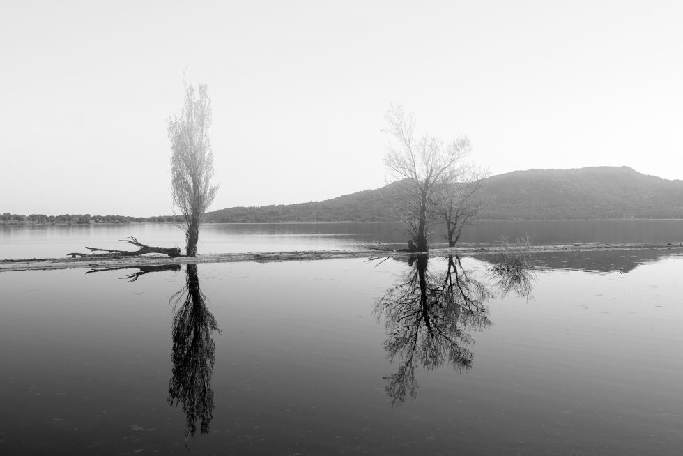 Ioannis-Stamou-Naturaleza-byn-63